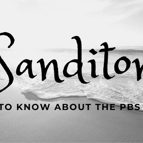 'Sanditon' 101: What to know before the PBS series airs