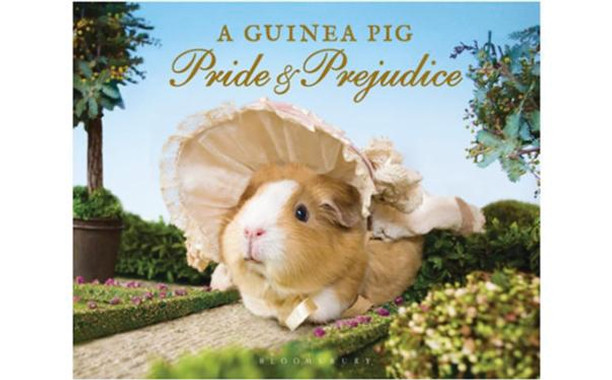 a-guinea-pig-pride-and-prejudice_612x380