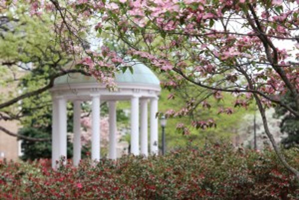 Spring views at the University of North Carolina at Chapel Hill.