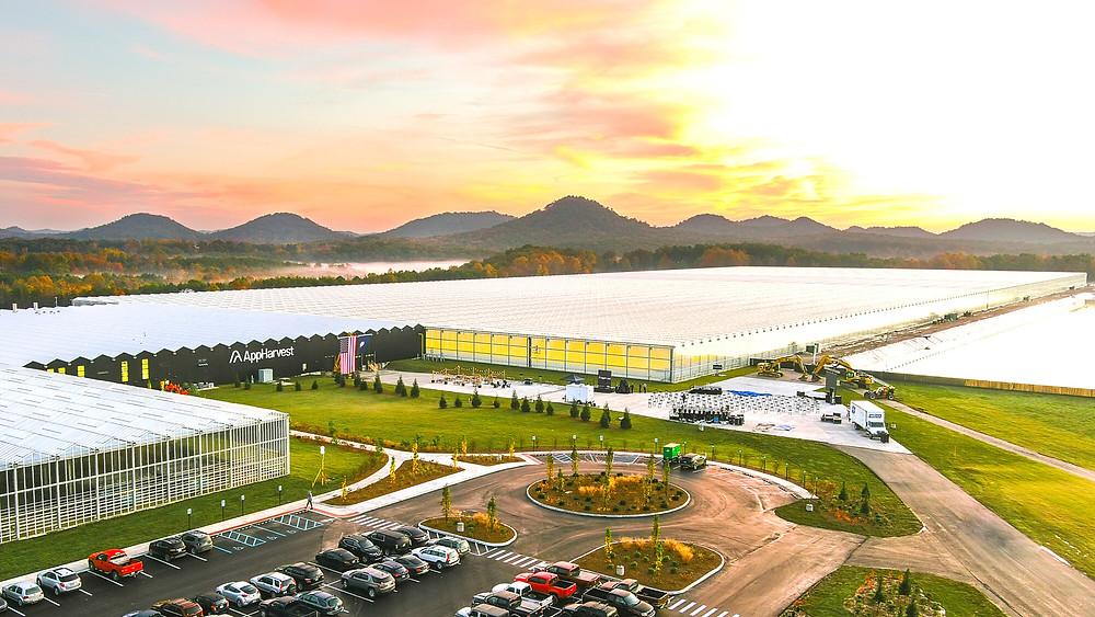 Image of AppHarvest's greenhouse in Morehead, KY