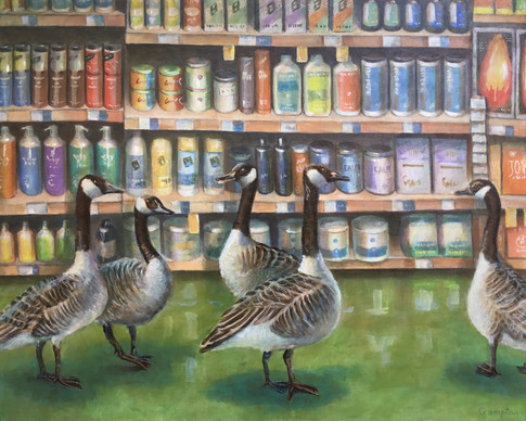 Geese at Whole Foods