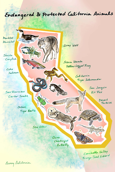 CA Map: Endangered & Protected California Animals
