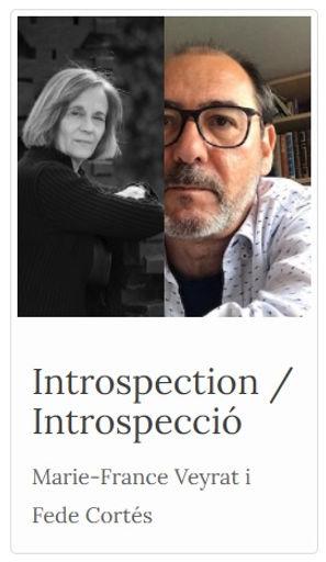 Introspection Fede Cortés.jpg