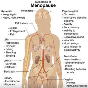 How to Manage your Menopause
