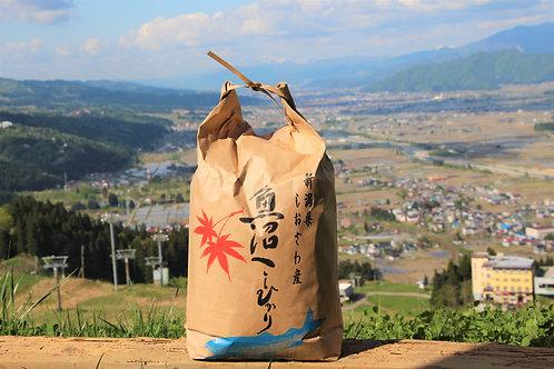 令和2年度新米【玄米5kg】 自家製南魚沼産石打地区コシヒカリ