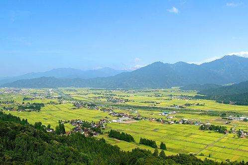 令和2年産【玄米30kg】旧塩沢町西山地区コシヒカリ