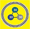 30-30-30 Logo - Yellow.jpg