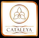 logo leon A y cataleya-02.png