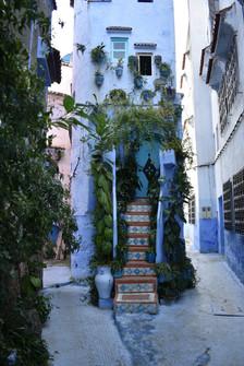 Cerulean Entry