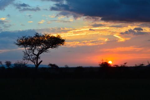 A Serengeti Sunset