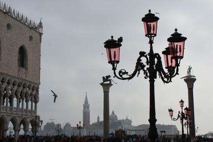 Piccioni di Piazza San Marco