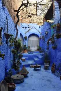 Cove of Hanging Plants