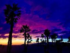 LA color.jpg