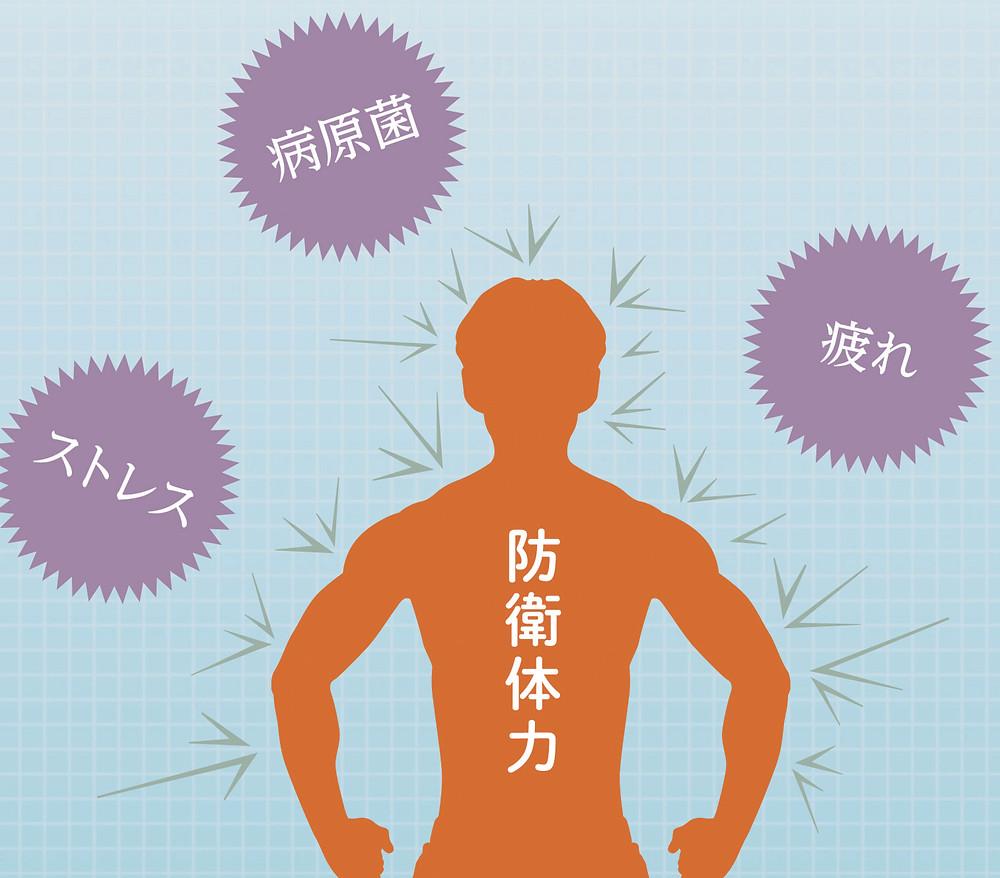 防衛体力 免疫力 予防