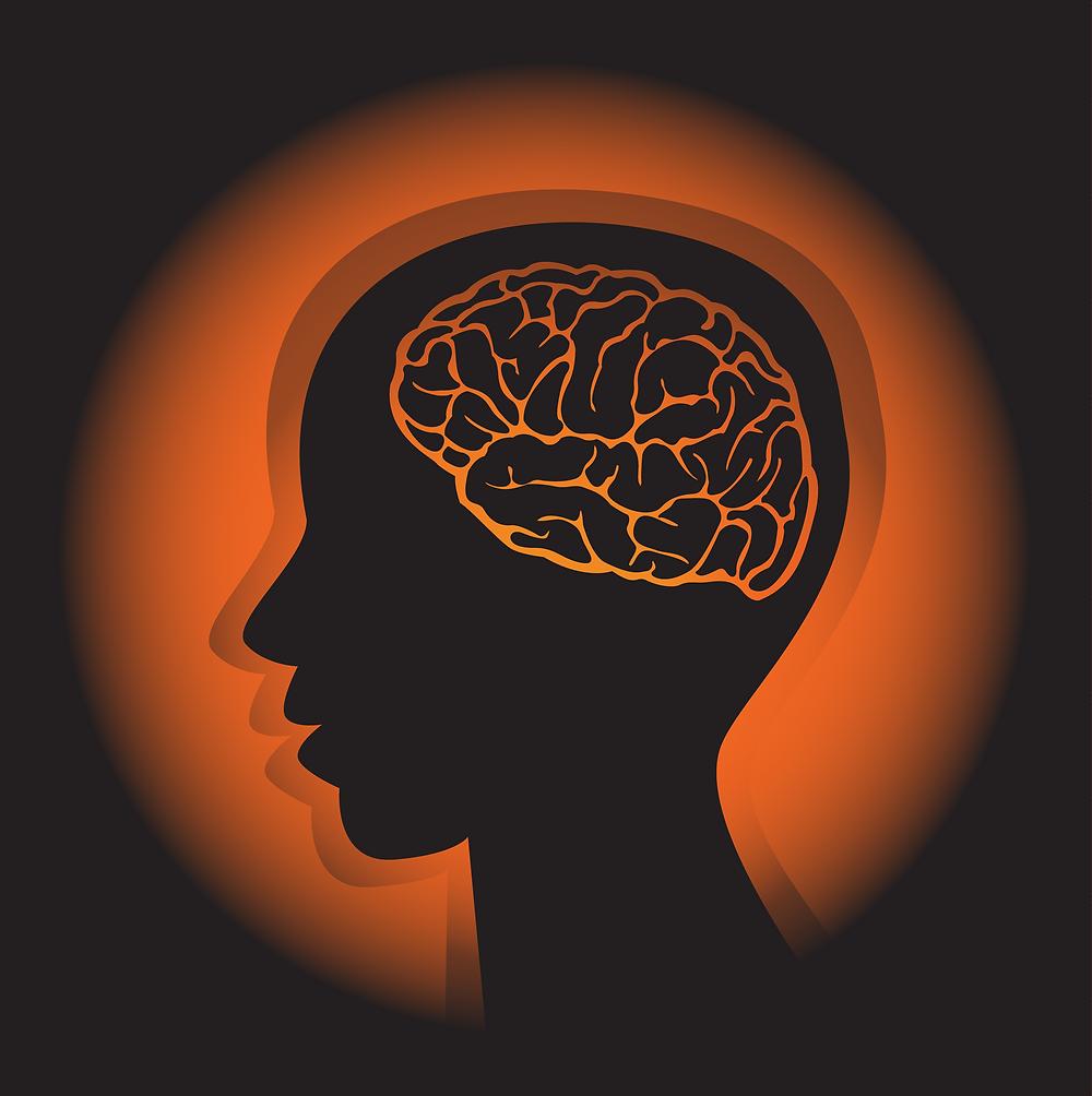 脳 忘年会 食べ過ぎ 飲み過ぎ 欲 快楽
