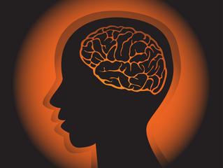 脳に従い脳に逆らう