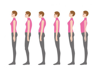 体型だけではなく、姿勢も大事