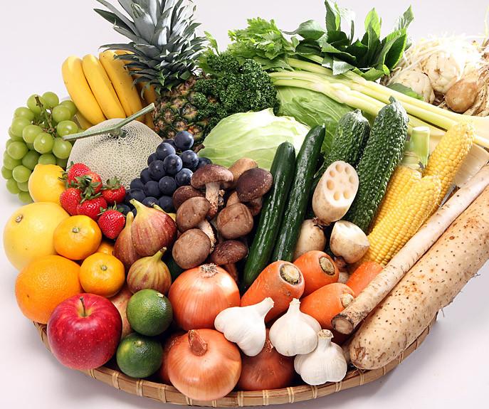 ビタミン ミネラル 酵素 代謝