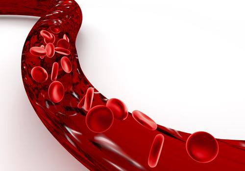血管 血液 健康