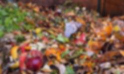 Bio-dechets compostage
