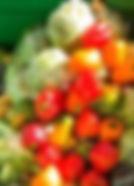 gaspillage alimentaire 2.jpg