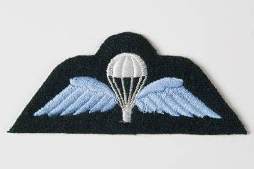 PARA Wings for Jumper