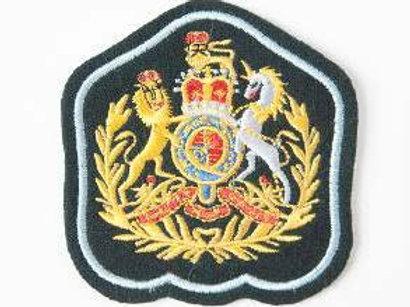 Badge SASC Corps SM