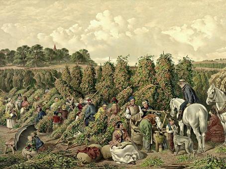 History for Hops