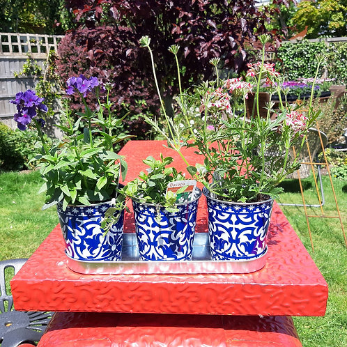 Zinc Triple Planter Set