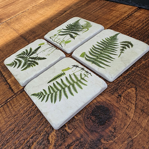 Coasters - Ferns