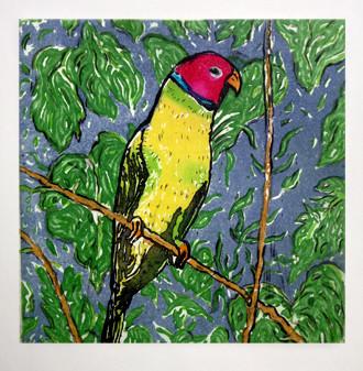 Parrot etching, © David Sandum