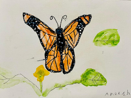 """""""The Butterfly"""" - My first story"""