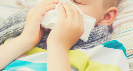 Spring, Summer, Fall, and Flu