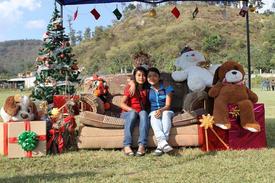 $75 - Christmas Celebration
