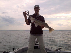 Fun time to be on mille lacs.  Most days the walleye numbers are 25 -50 per day. Bigger walleyes are