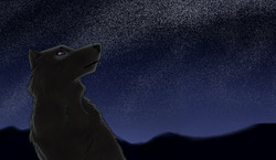 shadow in the night sky.jpg