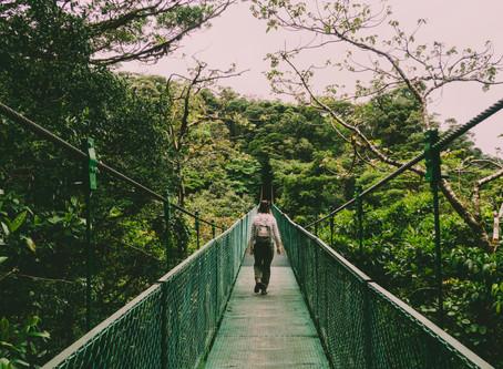 Jolene goes to Costa Rica: Monteverde