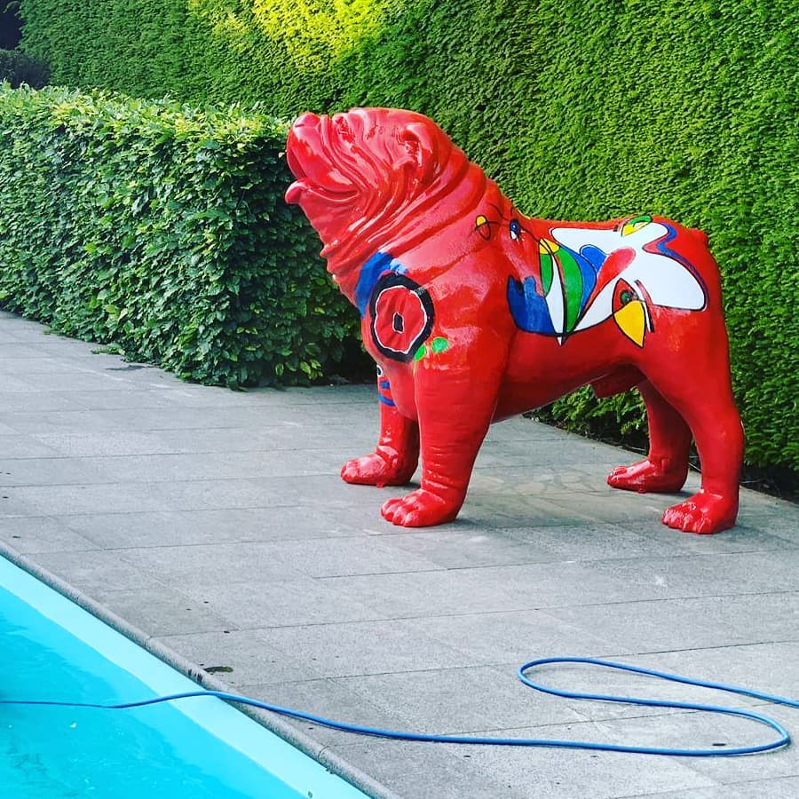 Bulldog 'POOLdog'!
