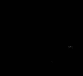 RÅHOLT_Logo_Final_transparang.png