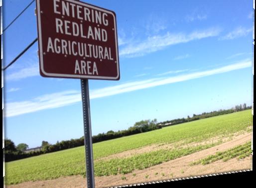 Zona Agrícola en Miami? ● Agricultural Zoning in Miami?