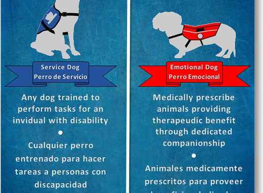 Aplicar con un animal de apoyo o de Servicio ● Apply with emotional support animal or a Service dog