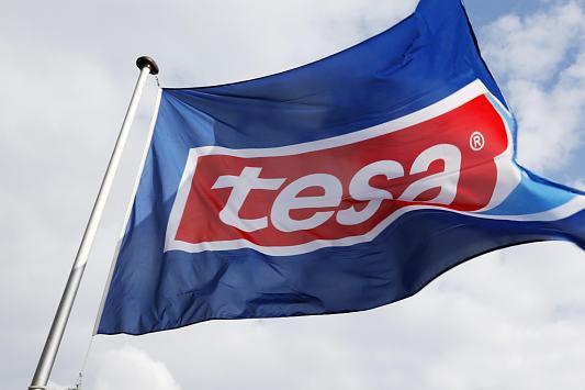 bandeira-da-tesa,316657_fixedwidth_5.jpg