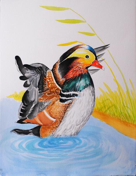 Mandelian Duck $500