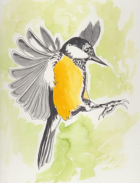 Yellow Bird -$150