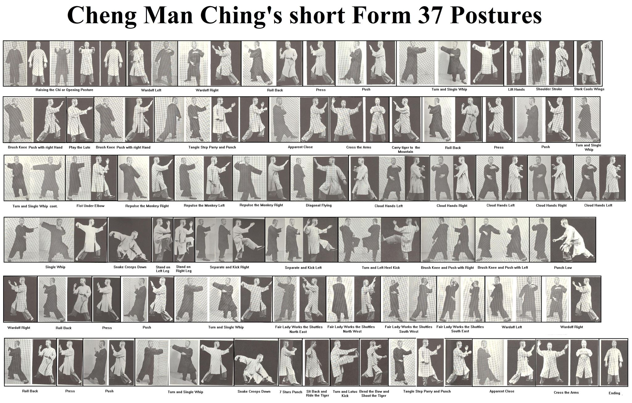 The 37 postures in our form