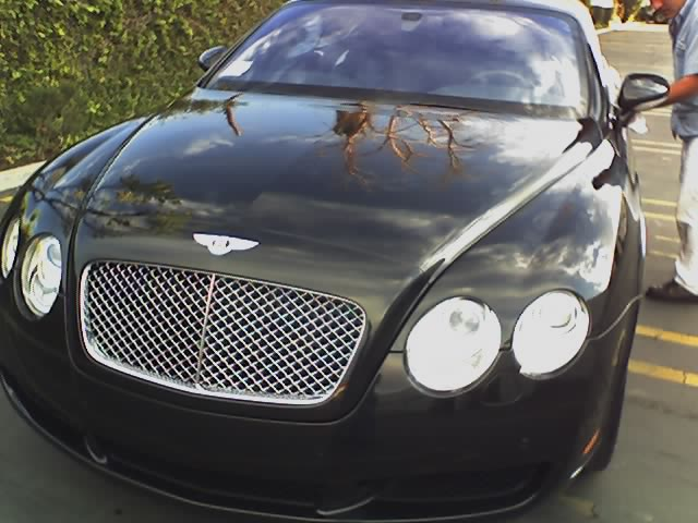 Bentley+pic