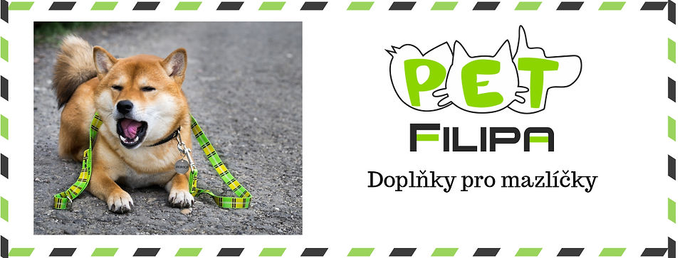 filipa_web.jpg