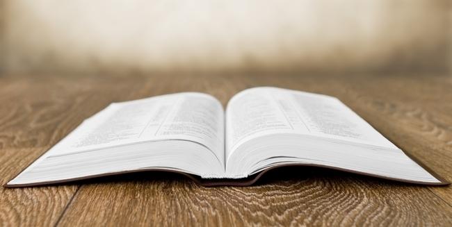 logos-11-12-kritika-biblie