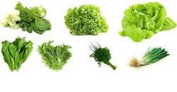 Repolhão verduras e legumes - alface sal