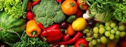 Repolhão verduras e legumes - mesa ..
